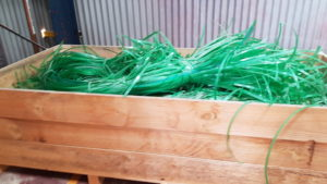 Plastic Green Strapping