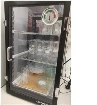 Desiccator Cabinet - Fischer Scientific